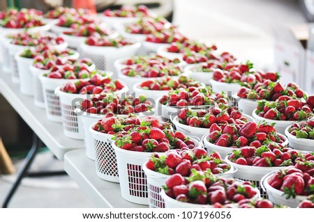 White plastic baskets overflowing with ripe strawberries at a farmers market in Raleigh, North Carolina