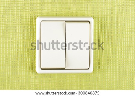 White plastic double electricity switch on the green wall
