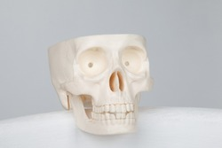 white plastic scull on the white background
