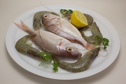 white plate with gilthead and shrimp decorated with parsley and half lemon