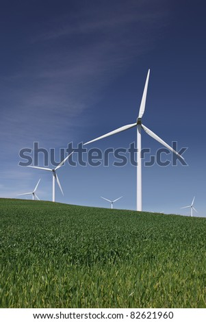 White power generating wind turbines, windmills against  blue sky, on green Spring wheat fields.