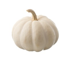 White pumpkin isolated on white background