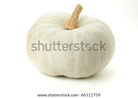 White pumpkin. Isolated on white background - stock photo