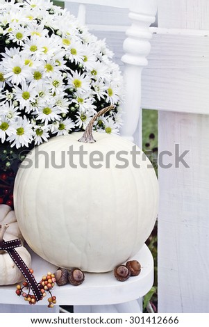 White pumpkins and mums sitting outdoors on an old white chair. #301412666