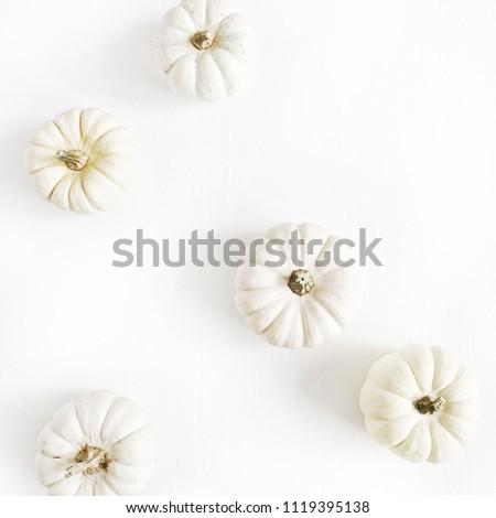 White pumpkins. Fall autumn minimal concept. Flat lay, top view.