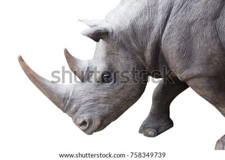 white rhinoceros, square-lipped rhinoceros isolated on white background