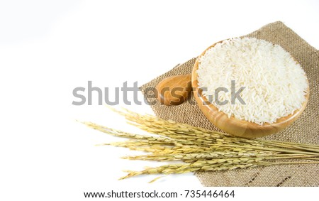white rice in wooden bowl ,spoon and plant rice isolated on white background #735446464