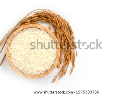 White rice, natural long rice grains ( Thai jasmine rice) in wooden bowl with paddy rice isolated on white  background. Healthy food and diet concept. Top view. flat lay.