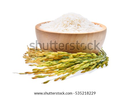 white rice (Thai Jasmine rice) in wooden bowl and unmilled rice isolated on white background #535218229