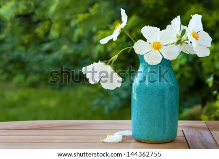 White Rock Rose Blossoms in a Crazed Blue Vase on a Table Outdoors with Green Bushes and Grass in the Background with Copy Space or Room for your Text #144362755