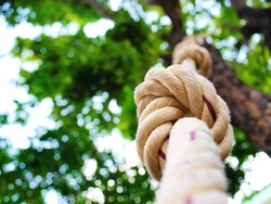 White rope tied in a knot hanging on the tree On a natural green background blurred for exercise or adventure with a copy area. Selective focus