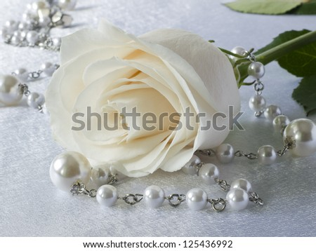 White rose and beads on white background