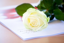 white Rose at weddig desk with grean leaves