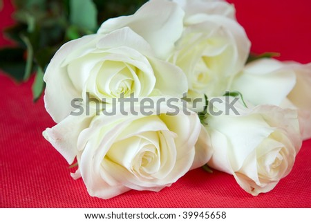White roses on red ground