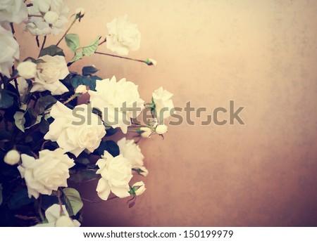 White roses, retro tinted photo
