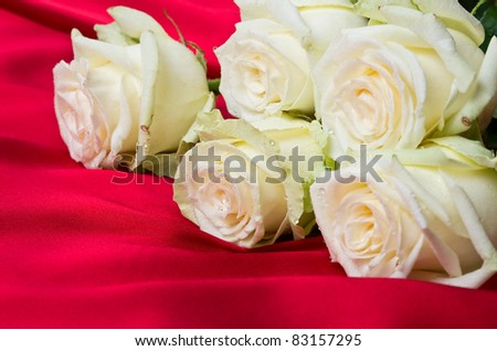 White roses with drops on red