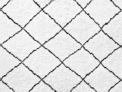 White rug with black lines. Simple geometric design.