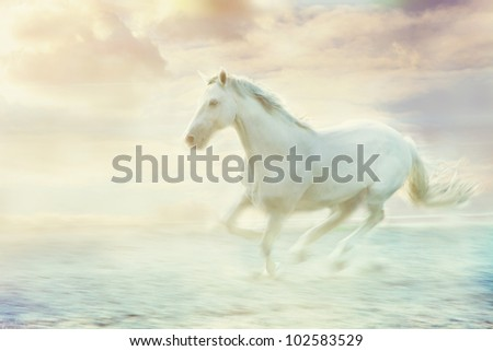 white running horse, sky fantasy background
