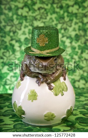 White's or Dumpy tree frog with St Patricks day hat on green shamrock clover background