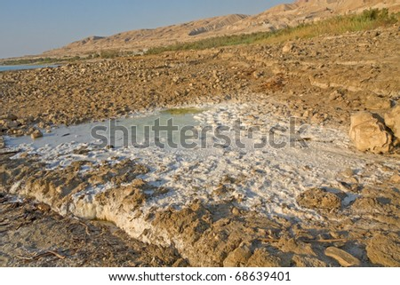 White Salt Appearance Around Small Pool On Muddy Salinity Unstable ...