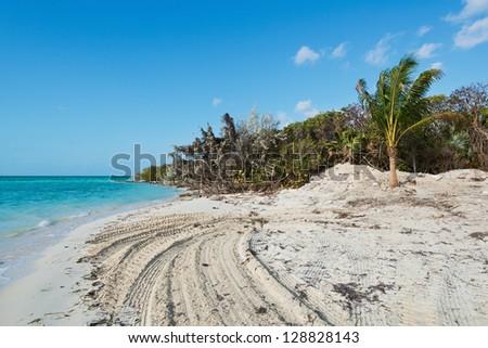 White sand beach, Coco Cay, Bahamas