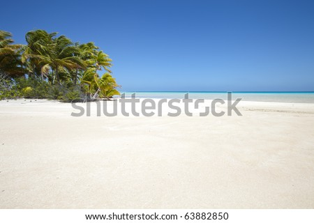 White sand beach front of palm tree and blue lagoon of a paradise island