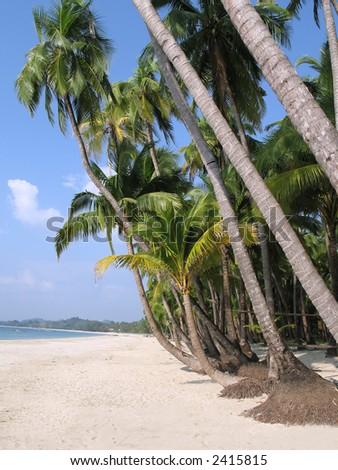 White sand beach on a tropical paradise