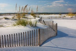 White Sand, Sea Oats and Fence on Florida Beach