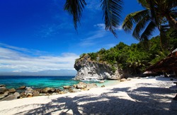White sandy beach and palm trees in a blue tropical lagoon. Apo island, Philippines