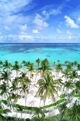 White sandy beach with palm trees at Bavaro Beach, Punta Cana, Dominican Republic