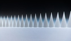White sharp triangles on a dark background, similar to shark teeth, protrude from the white body.