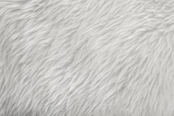 white sheepskin fur texture background