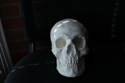 White skull made of plaster on a dark background