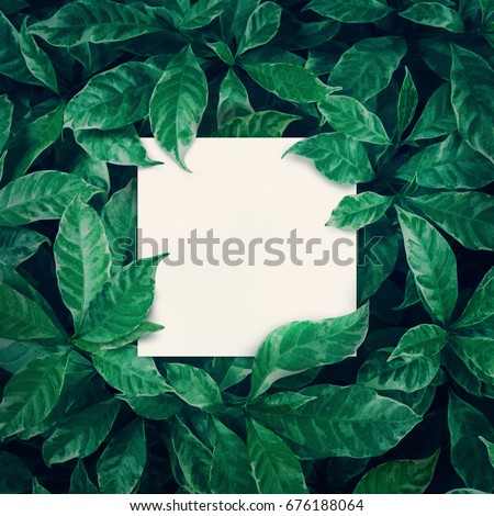 White space with green leaves background design with white paper.Flat lay.Top view of leaf.Nature concepts - Shutterstock ID 676188064