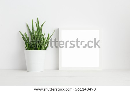 White square frame and houseplant on book shelf or desk. Minimal composition.