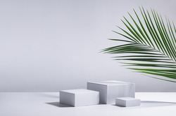 White square podiums in sunlight with shadow, green palm leaf in white space. Tropical showcase for cosmetic products, goods, shoes, bags, watches.
