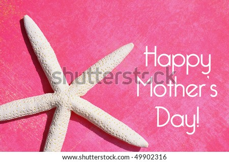 White starfish on pink background