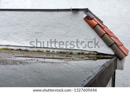 White stucco wall reflection in ponding water on old and mismanaged flat roof after rain. Water leak, roof drainage problem, roof settling or sagging, framing issue, rotten or saturated sheathing #1327609646
