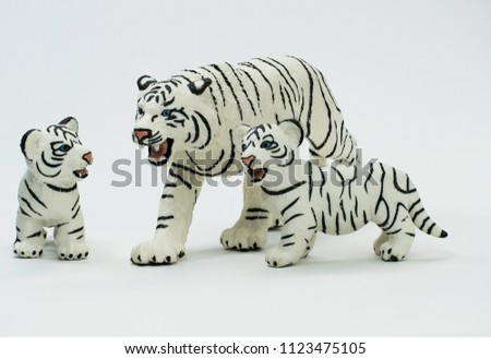 Stock Photo White Tiger is protecting her two blue eyed cubs.
