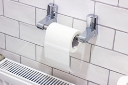 White toilet paper roll on the holder in the lavatory