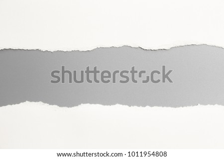 white torn paper on gray background. collection paper rip #1011954808