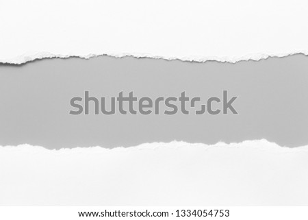 Photo of white torn paper on gray background. collection paper rip