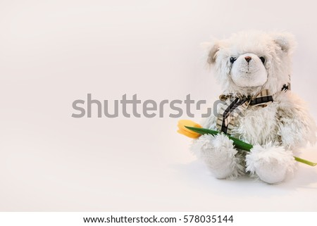 White toy bear on white background with yellow tulip. Gift for girls or women. #578035144