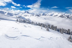 White trees covered by fresh snow in Alps, postcard winter landscape.