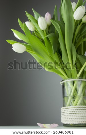 white tulip flowers in the vase with water on the grey background