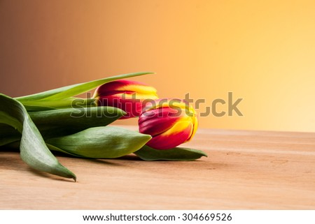 white tulip, red tulip, tulips on board, tulips on an orange background, beige background, background, sand, snow, white and red, beautiful bouquets, Valentine\'s Day, Mother\'s Day,yellow tulip