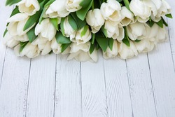 White tulips on wooden background, closeup. Fresh spring flowers. Flat lay, copy space. Wallpaper or holidays card. Top view.