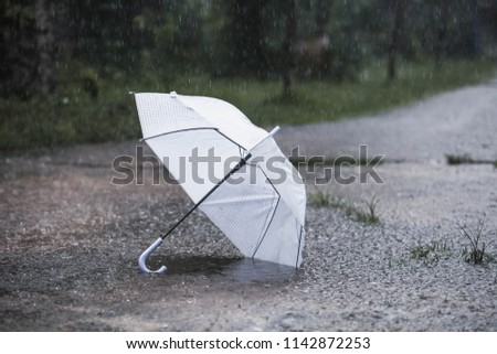 White umbrella in the rain #1142872253