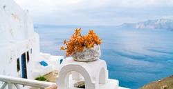 White villa house in Oia with stairs and a flower pot, Santorini