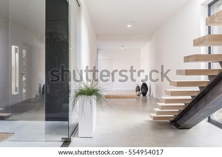 White villa interior wih staircase and decorative houseplant